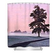 Tree At Dawn / Maynooth Shower Curtain