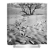 Tree Branch And Footprints On Sleeping Bear Dunes Shower Curtain