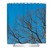 Tree Profile Shower Curtain