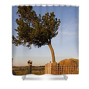 Tree Rock Wyoming Shower Curtain