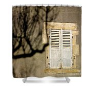 Tree Shadow Shower Curtain