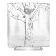 Tree Sketch Shower Curtain