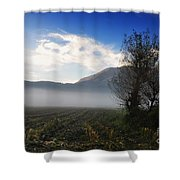 Tree With Fog Shower Curtain
