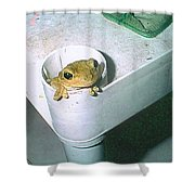 Treefrog Shower Curtain