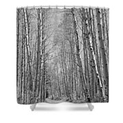 Trees Along A Road, Log Cabin Gold Shower Curtain