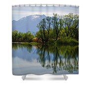 Trees And Lake Shower Curtain