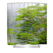 Tropical Forest, Seychelles Shower Curtain