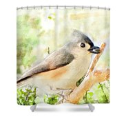 Tufted Titmouse With Seed - Digital Paint Shower Curtain