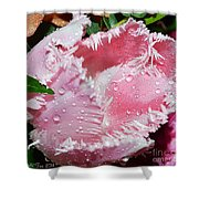 Tulip Lace Shower Curtain by Felicia Tica