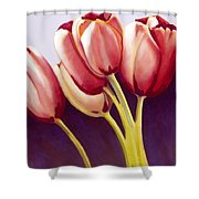 Tulips Are People Xiii Shower Curtain