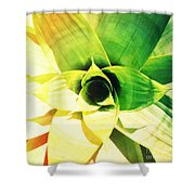 Tunnel Of Green Shower Curtain