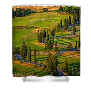 Tuscan Road Shower Curtain