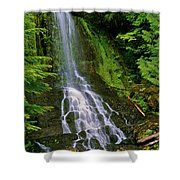 Twin Falls Creek Mount Rainier Shower Curtain