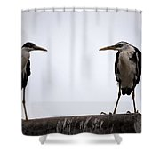 Two Of A Different Kind Shower Curtain