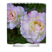Two White Roses Shower Curtain