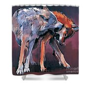 Two Wolves Shower Curtain by Mark Adlington