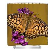 Variegated Fritillary Shower Curtain