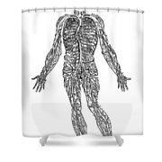 Vesalius: Venous System Shower Curtain
