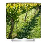 Vineyard Farm Shower Curtain