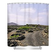 Vineyard On Lanzarote Shower Curtain
