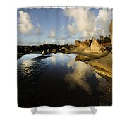 Visions Of Nature 6 Shower Curtain
