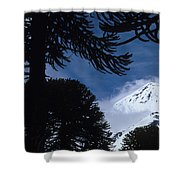 Volcano In Patagonia, Argentina Shower Curtain