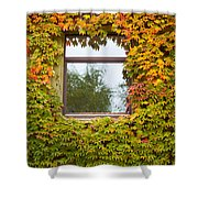 Wall Overgrown With Fall Colored Vine And Ivy Shower Curtain