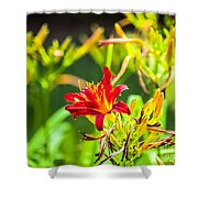 Wascana-84 Shower Curtain
