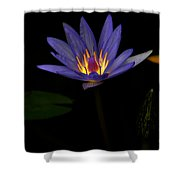 Lotus Bloom 2 Shower Curtain