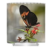 Well Poised Shower Curtain