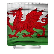 Welsh Flag Shower Curtain