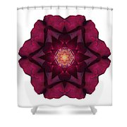 Beach Rose I Flower Mandala White Shower Curtain