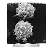White Blood Cells Sem Shower Curtain
