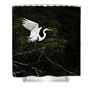White Egret's Takeoff Shower Curtain
