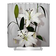 White Lily Spray Shower Curtain