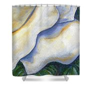 White Rose Two Panel Four Of Four Shower Curtain