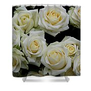 White Roses Shower Curtain