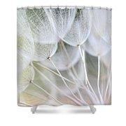 Wiesenbocksbart Shower Curtain