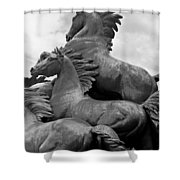 Wild Mustang Statue Shower Curtain