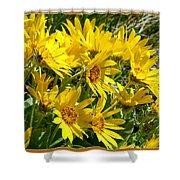 Wild Okanagan Sunflowers Shower Curtain