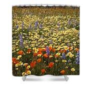 Wildflower Wonderland 9 Shower Curtain