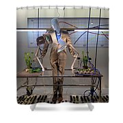 Window Art Shower Curtain