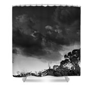 Windy Trees Shower Curtain