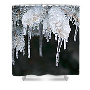 Winter Branches In Ice Shower Curtain