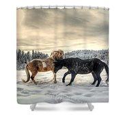 Winter Challenge Shower Curtain