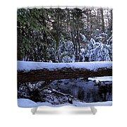 Winter Forest Stream Shower Curtain