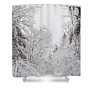 Winter Road Shower Curtain by Cheryl Baxter
