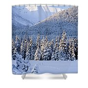 Winter Scenic Of Snowcovered Spruce Shower Curtain