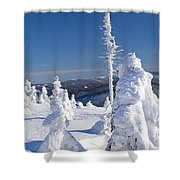 Winter View Of Snow Covered Trees Shower Curtain