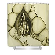 Woman Leaving Cave Shower Curtain